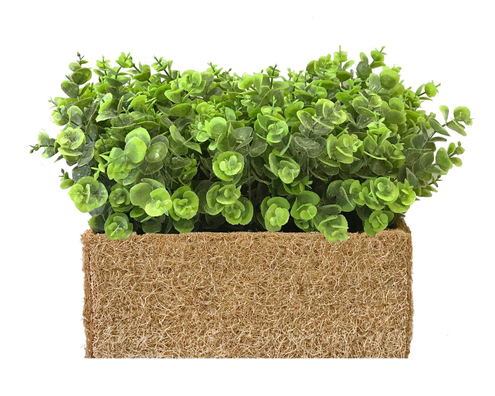 Какие искусственные растения подойдут для декора