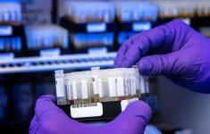 90% молодых людей имеют антитела к коронавирусу